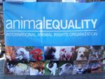 Virtual Reality - Animal Equity VR Video