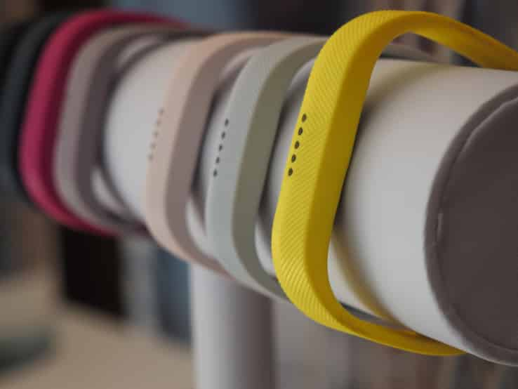 Fitbit Wearables in 2017.