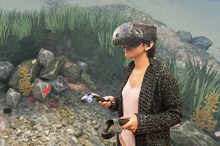 Virtual Reality Playground