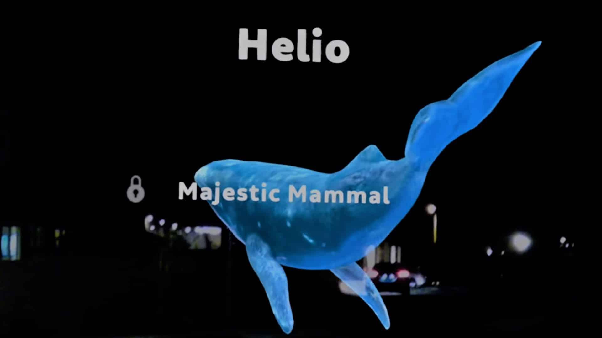 The Magic Leap whale